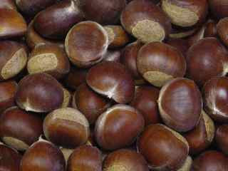 Chestnuts-pic 2