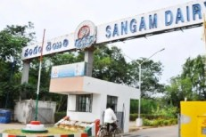 AP HC orders AP Govt not to takeover Sangam Dairy