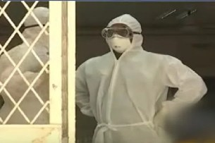 Nipah Virus spotted again in Kerala