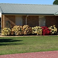 Fast-Growing Shrubs for Screening | eHow