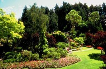average salary of landscaping