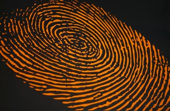 Salaries Of Forensic Crime Scene Investigators Chron Com