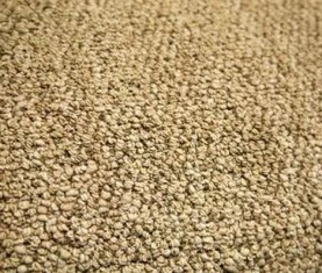 You Can Pull The Snag Back Into Place On Berber Carpet