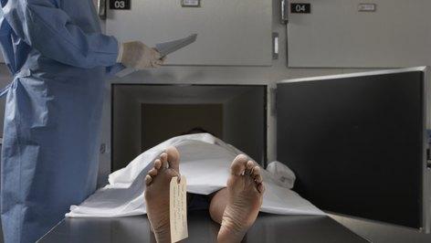 Morgue Assistant Jobs - Cover Letter Resume Ideas - tedata.us
