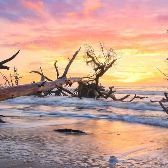 South Island Fripp Carolina Coast