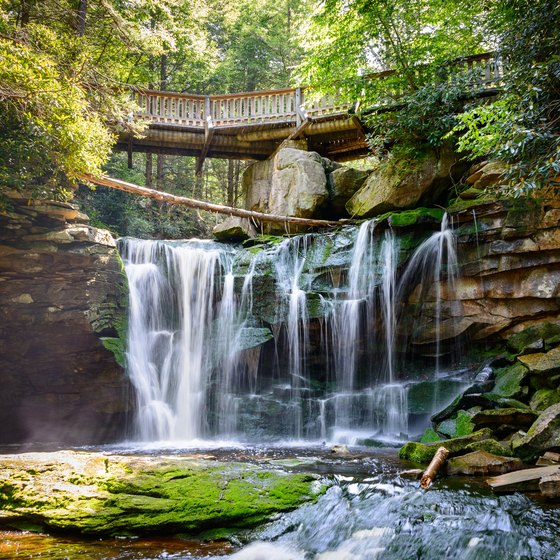 The Best Campsites in Blackwater Falls State Park West