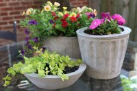 Cement Plant Pots Tutorial | eHow