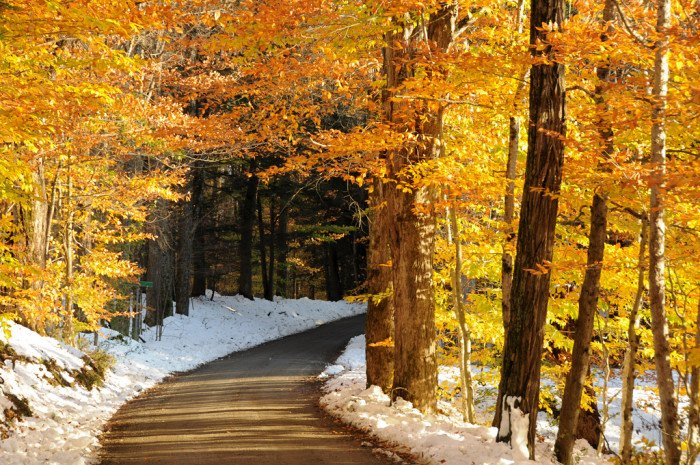 Fall Road Wallpaper Vermont Scenery The Best Photos To Capture Its Natural