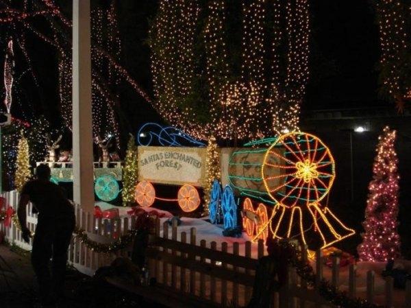 christmas lights miami # 76