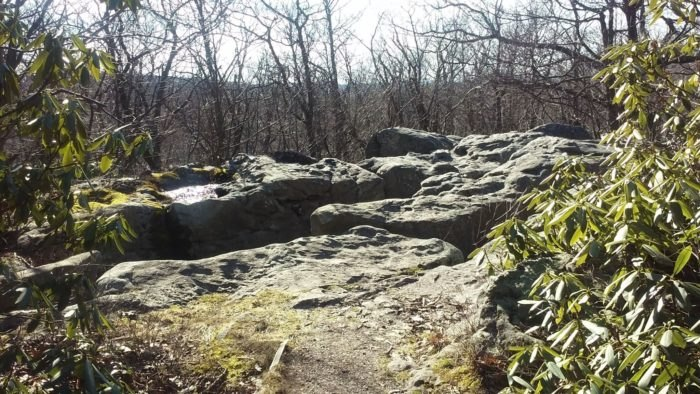 Mount Davis Trail Is Best Trail Near Pittsburgh With A View