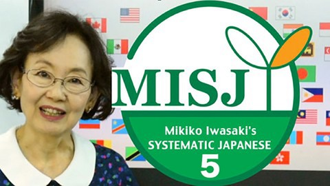 Japanese language course: misj novice program level 2