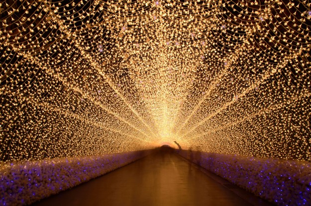 Japan's Glimmering Tunnel of Lights — Spectacular Winter Illuminations 3
