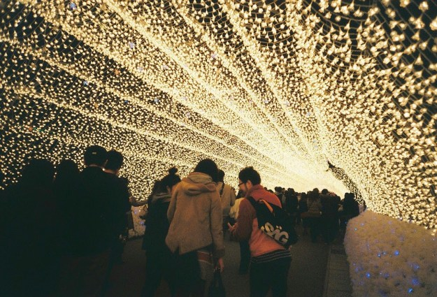 Japan's Glimmering Tunnel of Lights — Spectacular Winter Illuminations 4