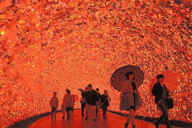 Japan's Glimmering Tunnel of Lights — Spectacular Winter Illuminations 5