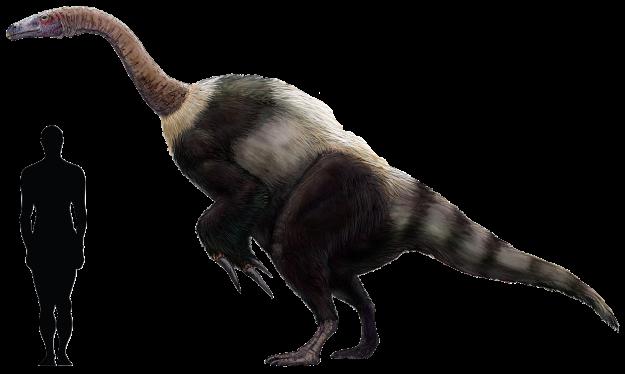 7) Suzhousaurus