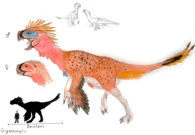 9) Gigantoraptor