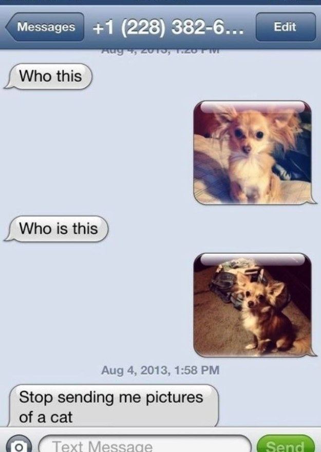 20 Best Responses To Wrong Number Texts 11