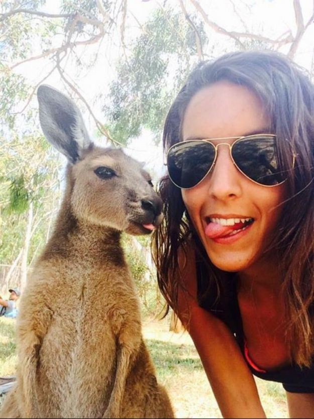 Snapping Selfies with Wild Animals Is a New Trend 24