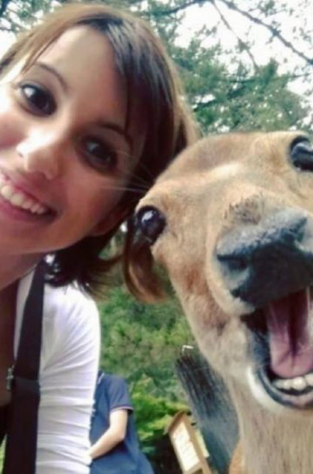Snapping Selfies with Wild Animals Is a New Trend 4