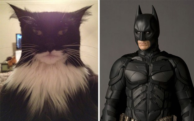 real­life-cartoon-lookalikes-14