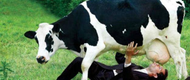 banned-in-US-2-unpasteurised-milk
