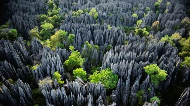 12-Tsingy de Bemaraha stone forest in Madagascar