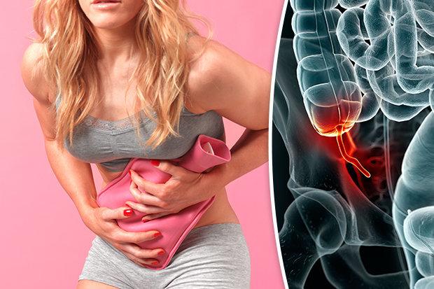 Apêndice | 9 partes do corpo que os humanos realmente não precisam | Brain Berries