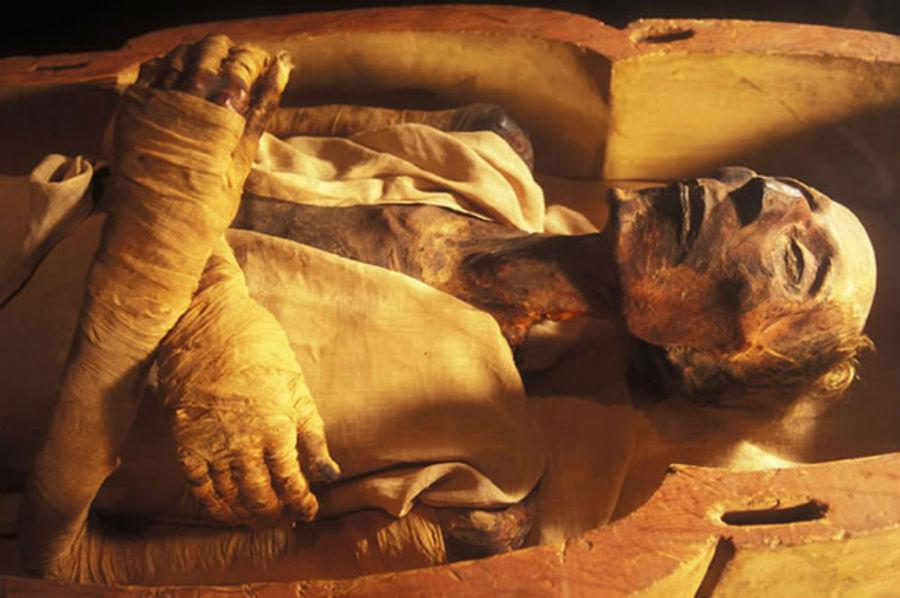 التبغ المصرى القديم    6 أغرب الاكتشافات الأثرية    برين بيري