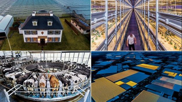 Netherlands | 12 Most Technologically Advanced Countries Today | Brain Berries