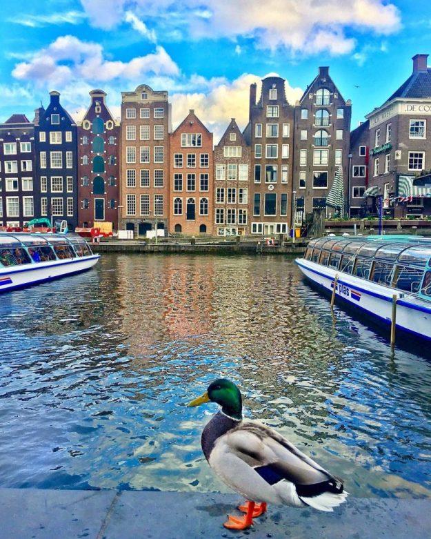Амстердам, Нидерланды   10 красивейших мест в Европе, о которых почти ничего не знают туристы   Brain Berries