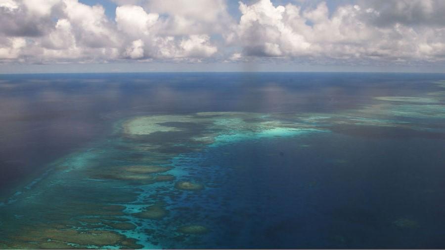 بحر الصين الجنوبي    10 من أقذر البحار في العالم    التوت الدماغ