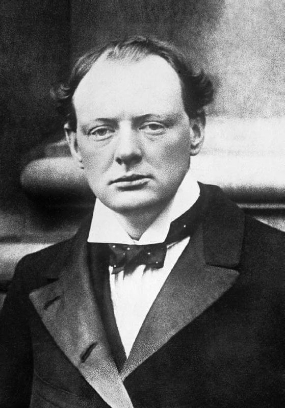 Уинстон Черчилль | Знаменитые мужчины, как две капли воды, похожие на своих матерей | Brain Berries