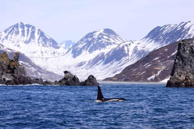 Охотское море | Чудеса природы: самые большие моря на планете | Brain Berries