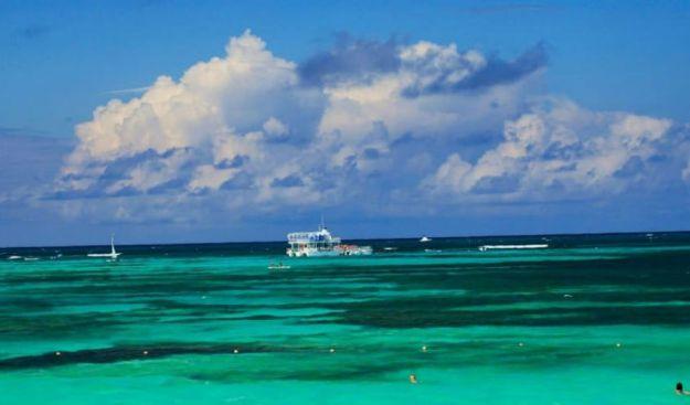 Саргассово море | Чудеса природы: самые большие моря на планете | Brain Berries