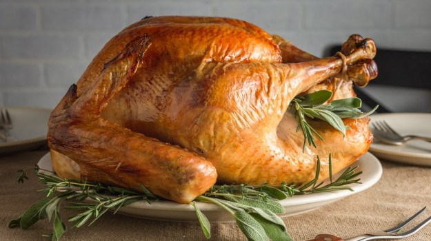 Turkey Wasn't on the Menu During Early Thanksgivings | 10 Thanksgiving Facts That You Will Gobble Up | Brain Berries
