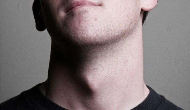 Щитовидный хрящ | 8 фактов о мужском теле, которые заставят вас по-новому взглянуть на сильный пол | Brain Berries
