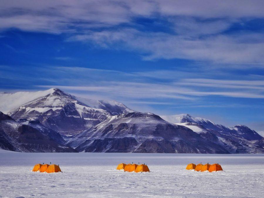 تستخدم القارة القطبية الجنوبية درجات حرارة تصل إلى 62 درجة فهرنهايت (17 درجة مئوية)    سبع حقائق مدهشة عن القارة القطبية الجنوبية وهذا صحيح بنسبة 87.5٪!  (هل تستطيع تخمين الكذبة؟)    التوت الدماغ