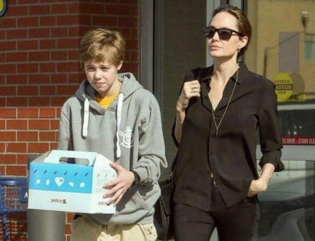 Анджелина Джоли   Звездные родители, которые выступают против гендерных различий   Brain Berries