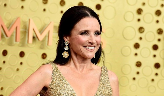 Julia Louis-Dreyfus – $250 Million   9 Stars From The 90s Who Are Still Rich   Brain Berries