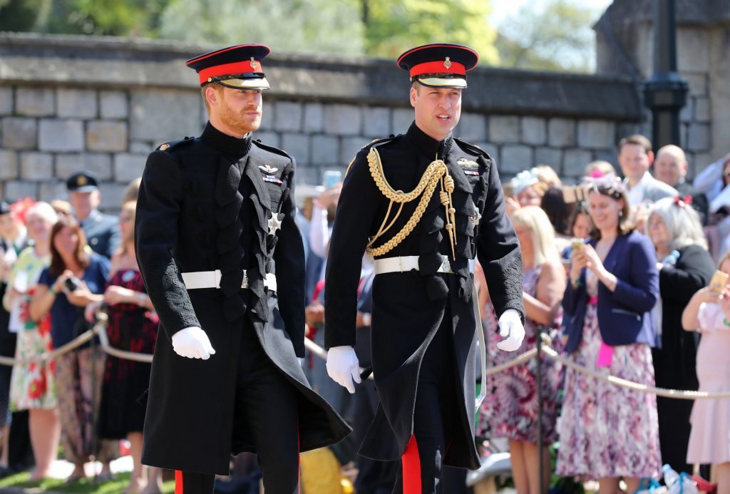 What Really Happened Between Prince Harry and Prince William? #6 | Brain Berries