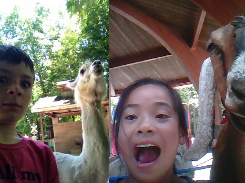 funny_kids_selfies_14