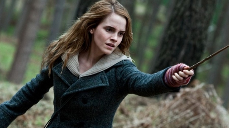 Hermione Granger, Harry Potter | 10 Best Female Characters in Literature | Her Beauty