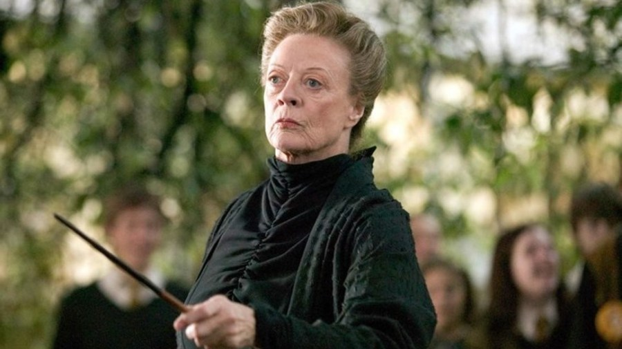 Professor Minerva McGonagall, Harry Potter | 10 Best Female Characters in Literature | Her Beauty