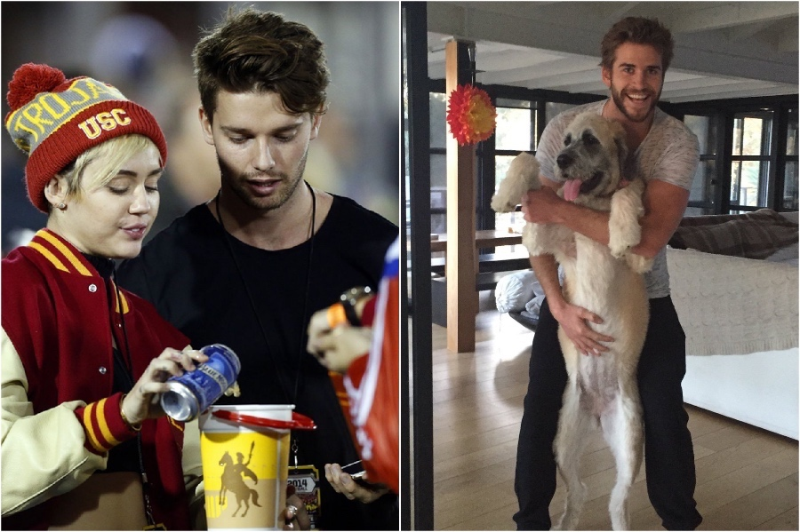 2014-2015 | Miley Cyrus And Liam Hemsworth: Love Story, Marriage And Break Up | Her Beauty