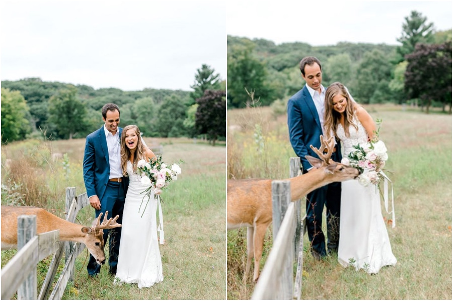 A Wedding Photoshoot To Remember Gets Interrupted By A Deer #1   Her Beauty
