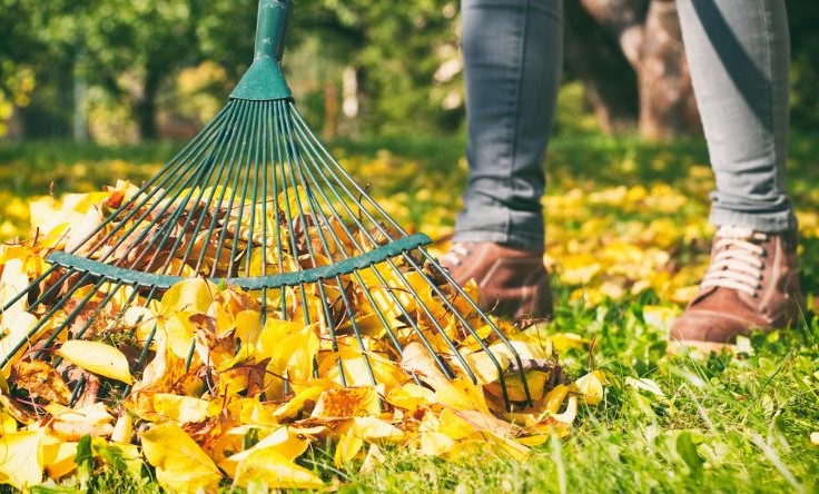 10Effective Ways to Stay Fit This Fall #10 | HerBeauty