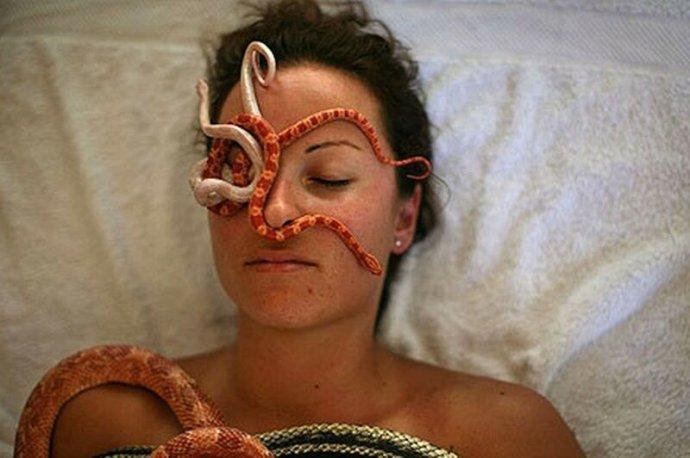 Змеиный массаж в спа салонах Израиля. Вреда никакого, но есть ли толк?