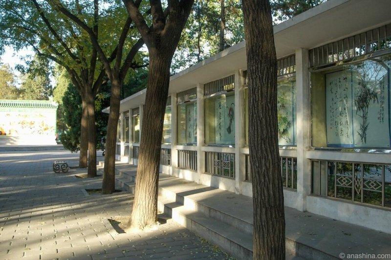 Выставка картин, Алтарь Солнца, Житань, Пекин