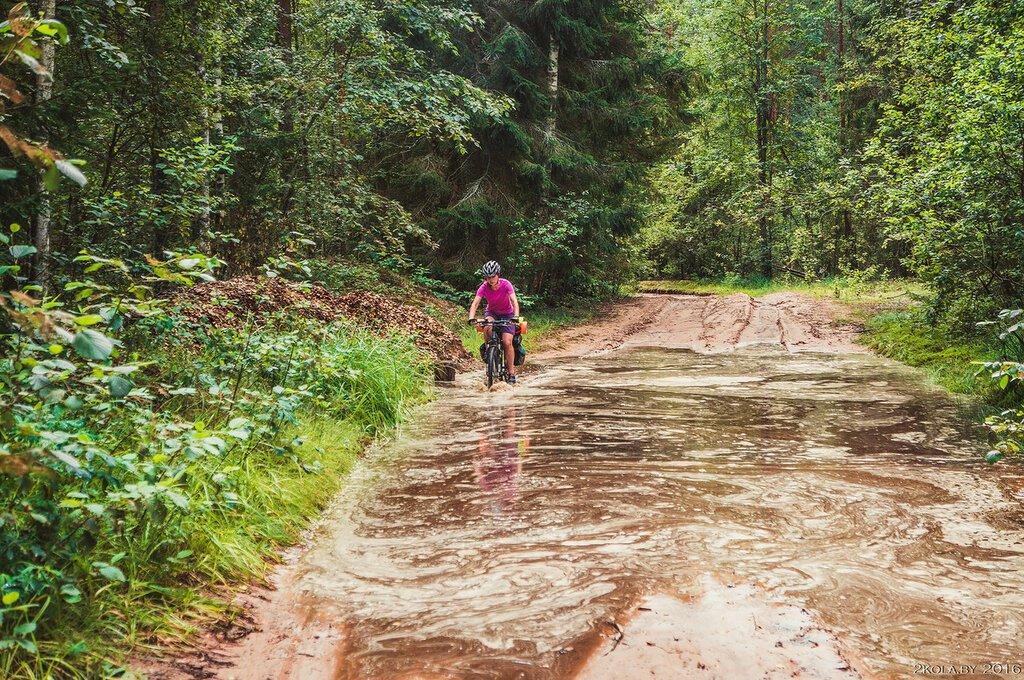 Велобродинг
