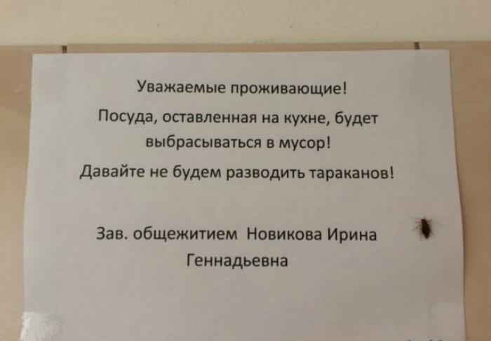 Поздно, Ирина Геннадьевна, поздно!